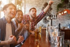 Football Fans Watching Match In Bar And Drinking Beer. Celebrating Victory stock image