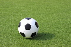 Football in the field Stock Image