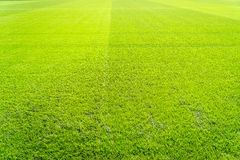 Football field background Royalty Free Stock Photos