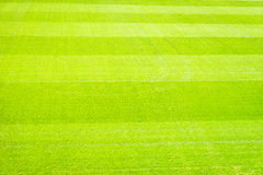 Football field background Stock Photos