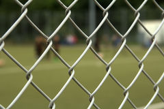 The football field Stock Image