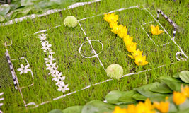 Football field with gates made of grass Royalty Free Stock Photo