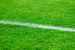 Football field grass Royalty Free Stock Image