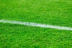 Football field grass royalty free stock image