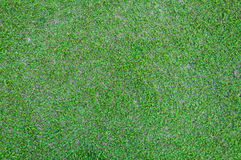 Football field green grass pattern textured background Royalty Free Stock Photos