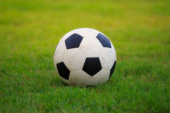 Football  on field of green grass Royalty Free Stock Image
