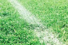 Football field, green lawn with a line drawn with white paint. Football field, lawn with a line drawn with white paint stock image