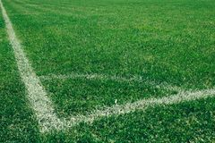 Football field, a green lawn with a line drawn with white paint. Football field, green lawn with a line drawn with white paint stock image