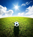 Football field soccer stadium on the green grass blue sky sport Royalty Free Stock Image