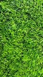 Football Field Turf Stock Photos