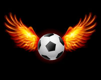 Football-Fiery wings. A color illustration on a black background Royalty Free Stock Images