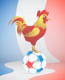 Football with France symbol red Rooster Royalty Free Stock Photo