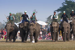 Football game - Elephant festival, Chitwan 2013, Nepal Royalty Free Stock Images