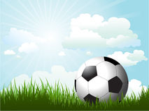 Football in grass Stock Images