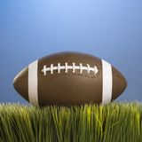 Football in grass. Stock Photo