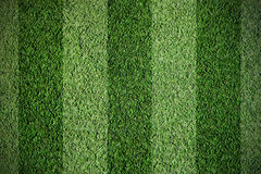 Football grass Stock Images