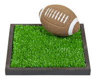 Football on the Grass Stock Image