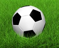 Football on a grass. The football lies on a grass Royalty Free Stock Photo