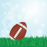 Football on grass. Illustration of football on grass with sunshine and flare on background Royalty Free Stock Images