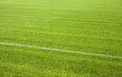 Football grass background Royalty Free Stock Photo