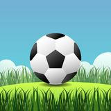 Football on grass and bushes with sky background.Soccer with green field. Football on grass and bushes with sky background illustration.Soccer with green field stock illustration