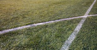 Football grass Royalty Free Stock Image