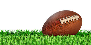 Football And Grass Isolated Stock Photos