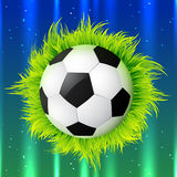 Football with grass. Vector shiny football with grass Royalty Free Stock Photo