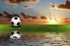 Football on the green grass Stock Images