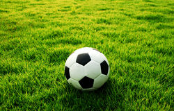 Football green grass Royalty Free Stock Images