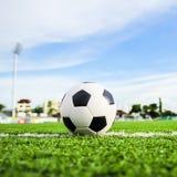 Football on green grass Stock Image