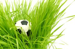 Football on green grass with text area copyspace Royalty Free Stock Photo