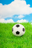 A football on a green lawn Stock Images