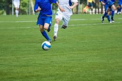 Football. A green lawn Royalty Free Stock Photography
