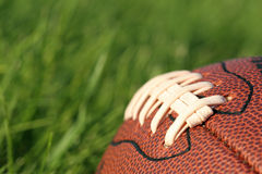 Free Football In The Grass Royalty Free Stock Photography - 207137