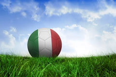 Football in italy colours Royalty Free Stock Photo
