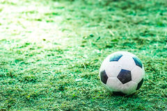 Football on the lawn Royalty Free Stock Image