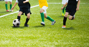 Football match for children. Training and football soccer tourna Stock Photography