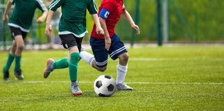 Football match for young players. Training and football soccer tournament for children. Youth soccer competition Royalty Free Stock Photo