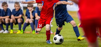 Football match for young players. Training and football soccer tournament for children stock images