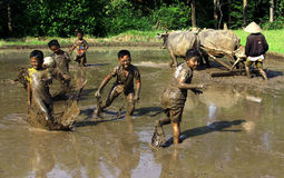 Football in the mud Royalty Free Stock Images