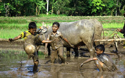 Football in the mud Royalty Free Stock Photography
