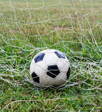 Football in the net Stock Images