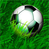 Football over close up grass Stock Photography