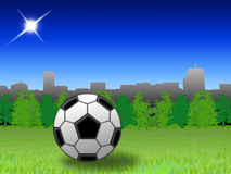 Football in the park Royalty Free Stock Photo