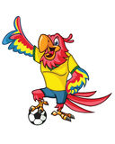 Football Parrot Mascot Royalty Free Stock Photo