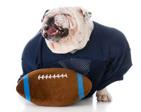 Football player with attitude Royalty Free Stock Photo