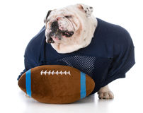 Football player with attitude Royalty Free Stock Image
