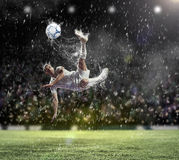 Football player striking the ball Royalty Free Stock Image