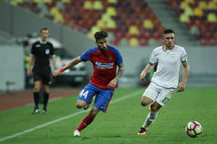 Football  Romania's Liga 1– Steaua Bucuresti – Concordia Chiajna Stock Images
